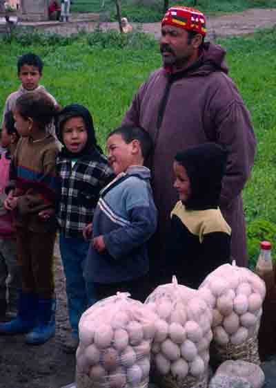 Eggs for sale in Morocco
