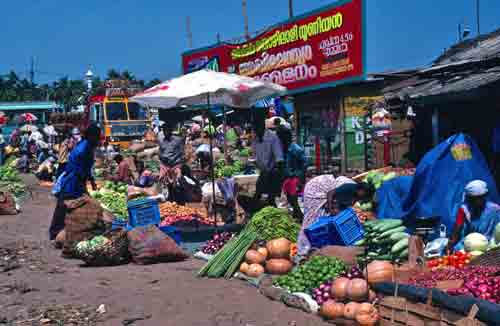 One small corner of the sprawling Trichur Market
