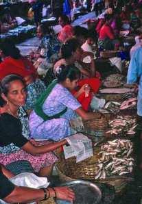 Goa Fish Market