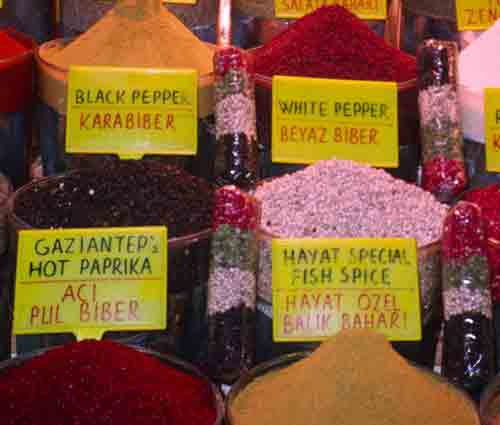 Pepper: King of Spices (1/2)